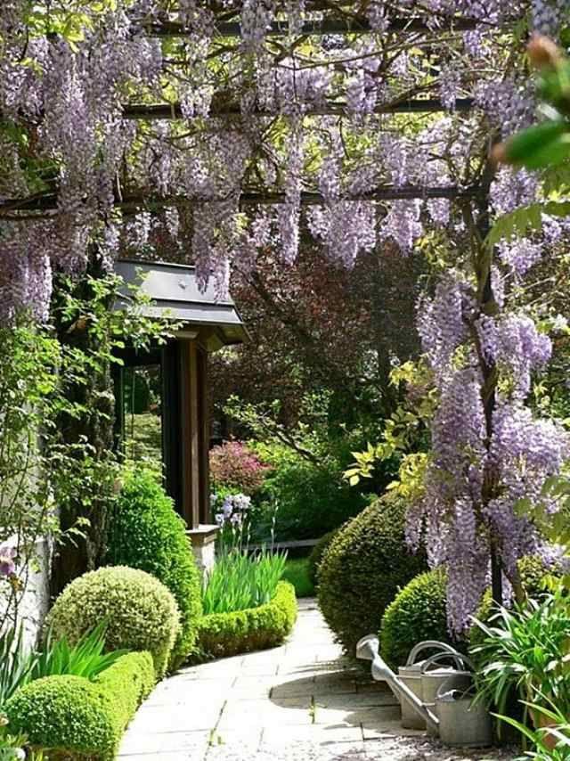 Landhausstil Garten sonnen und schattenliebende pflanzen gartenideen landhausstil