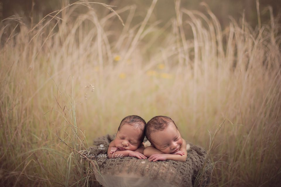 Photography · outdoor newborn photography backdrops