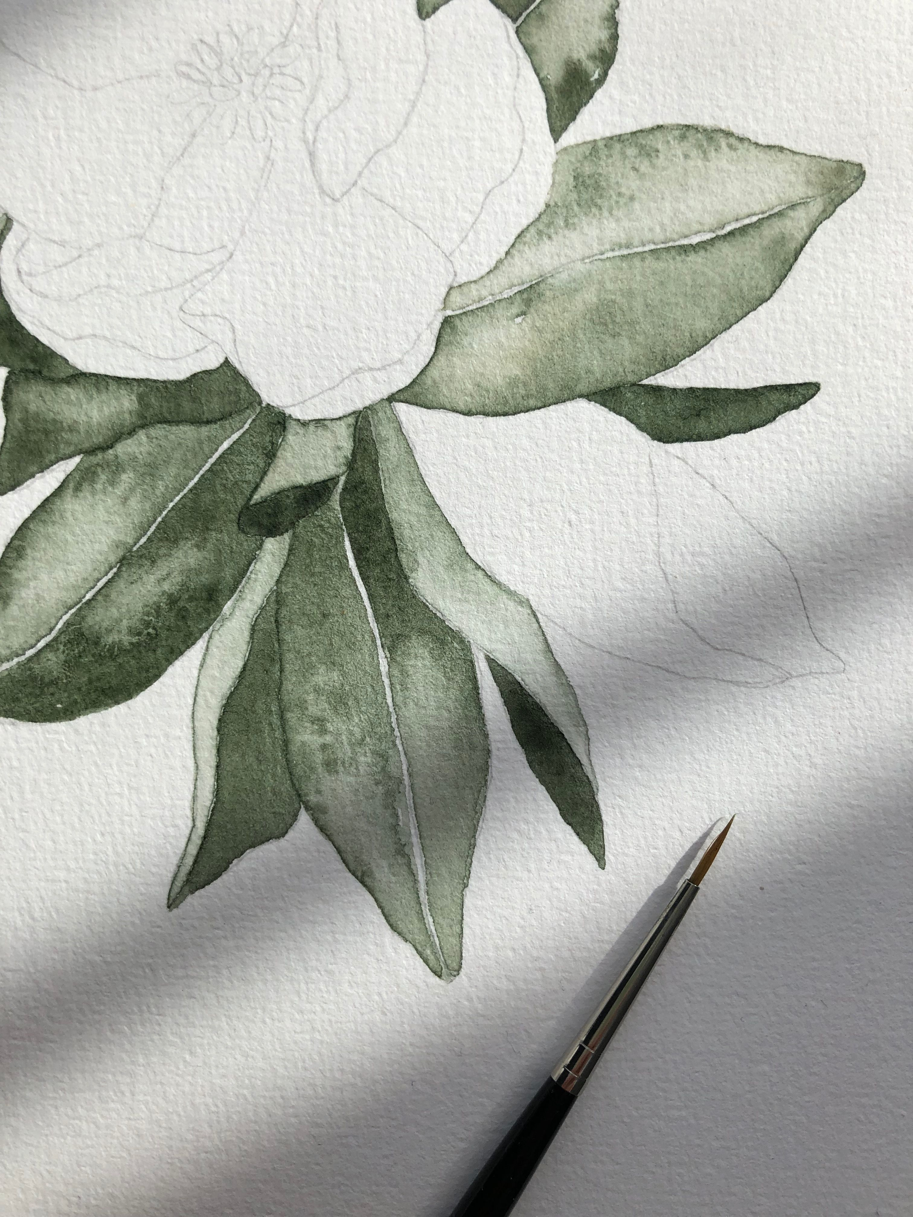 Work In Progress Of These Watercolor Florals I Painted The Leaves