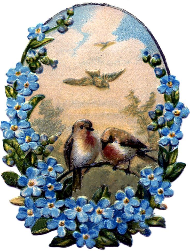 Birds-with-Forget-Me-Nots-GraphicsFairy.jpg (910×1200)