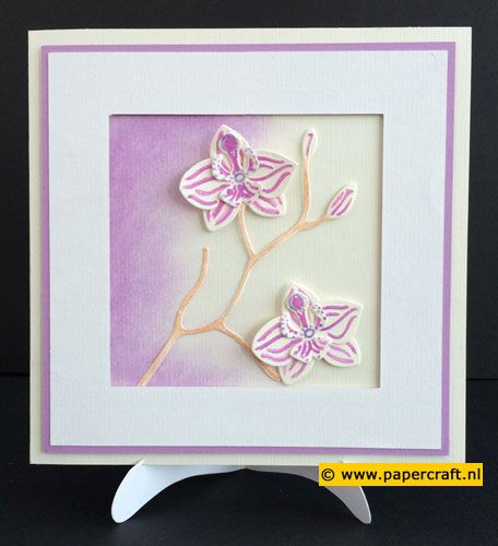 #mariannedesign #collectable COL1379 Orchid