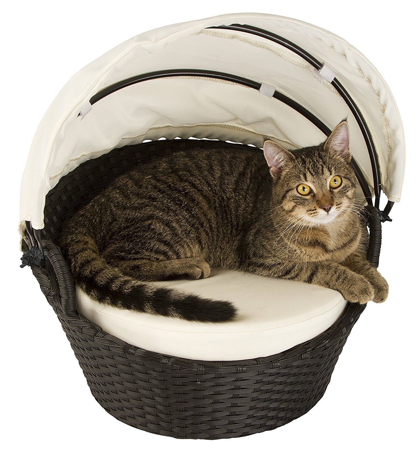 Chillout Cat Lounge Cat lounge, Outdoor cat house, Cat house