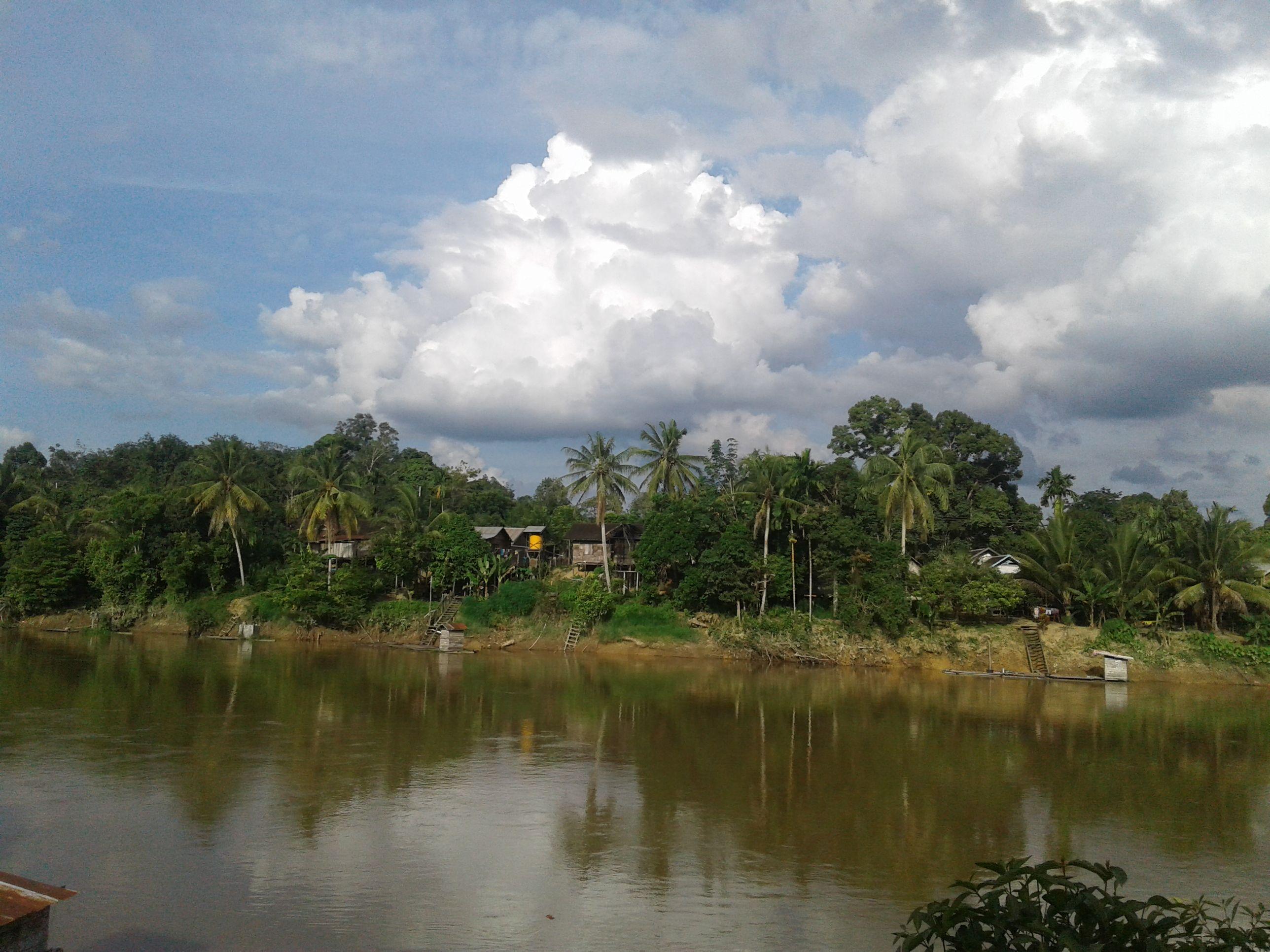 Sungai Mentaya, Kalimantan Tengah   Kalimantan, Sungai