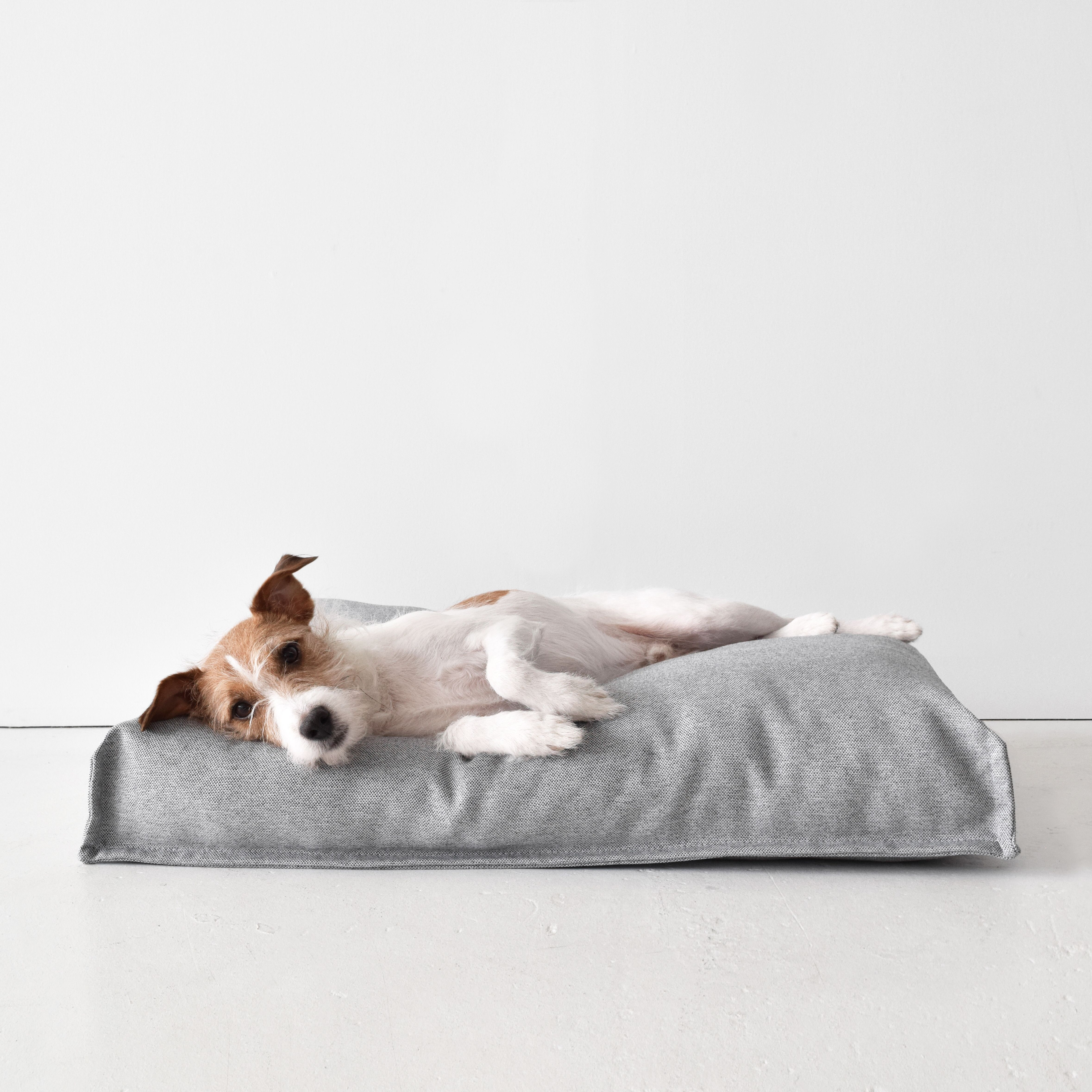 Hygge Bed Dog Bed Stand Dog Bed Dog Friends