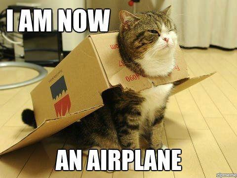 """"""" Maintenant, je suis un avion ! """" / Rêvez en grand ! / Dream big."""