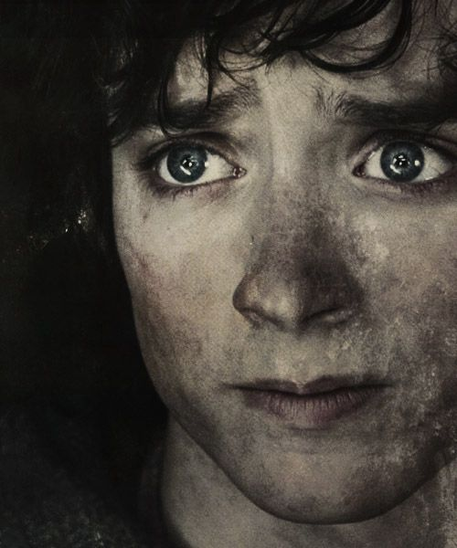Sad Frodo.  :(  His eyes are incredible!