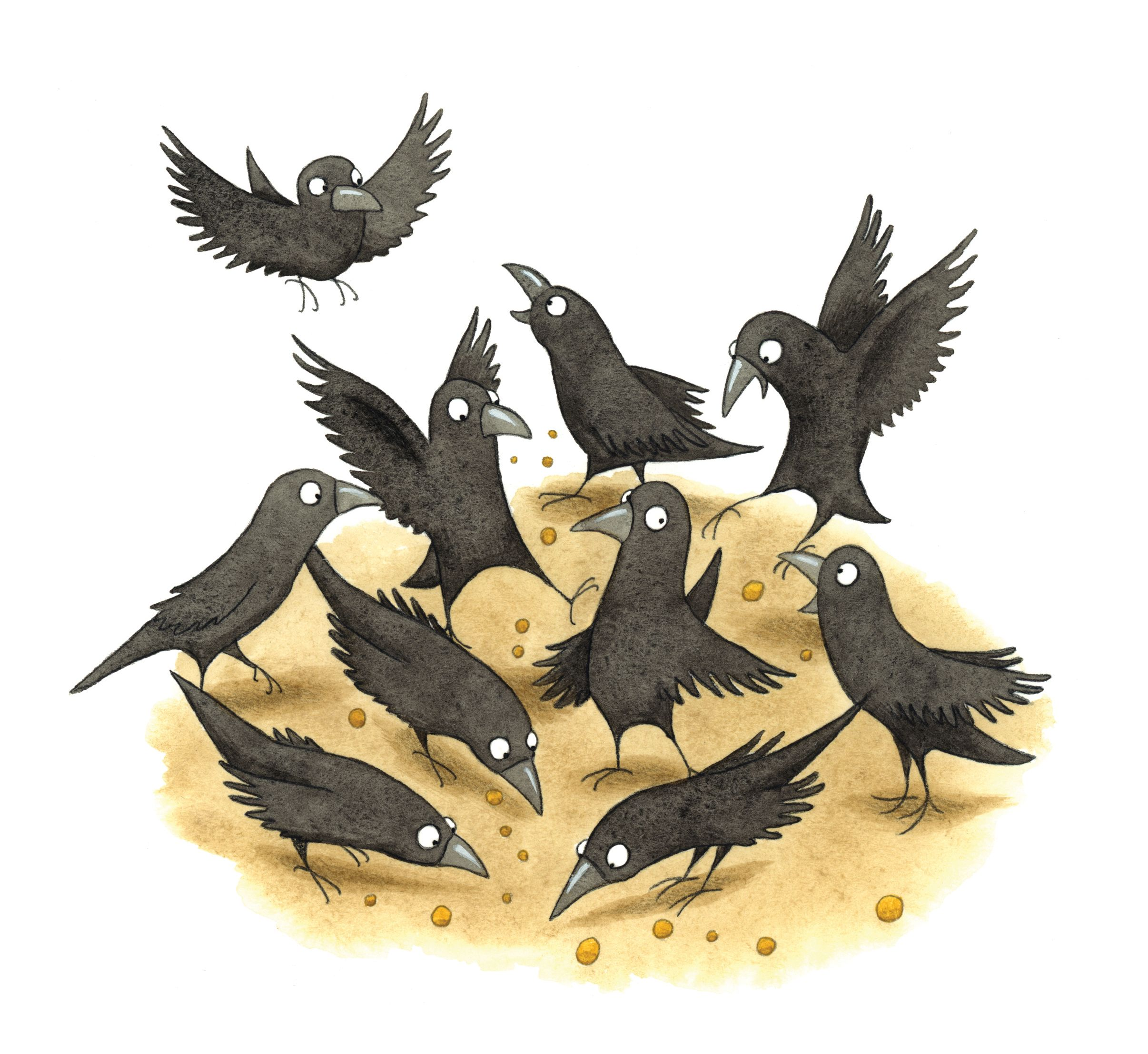 Crow Illustration By Emma Allen. From The Children's