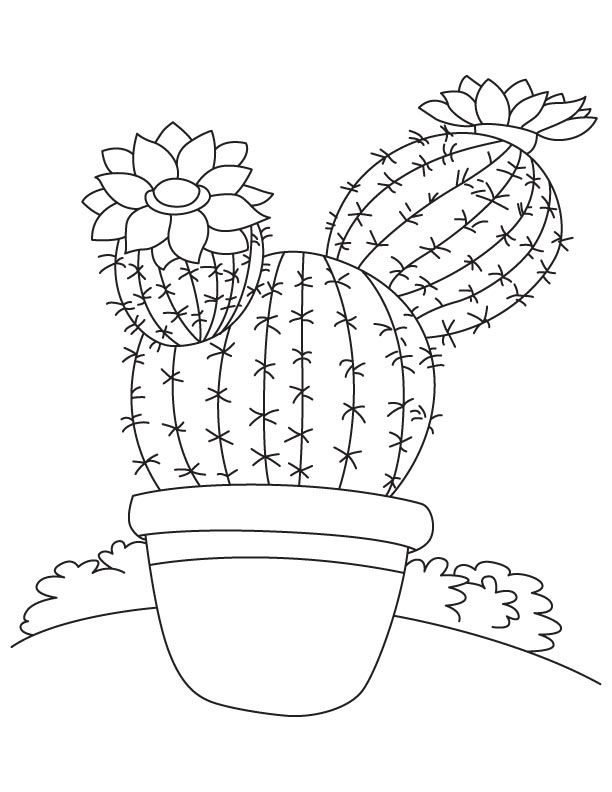 Tall Tree Like Cactus Coloring Page Flower Coloring Pages Coloring Pages Flower Drawing