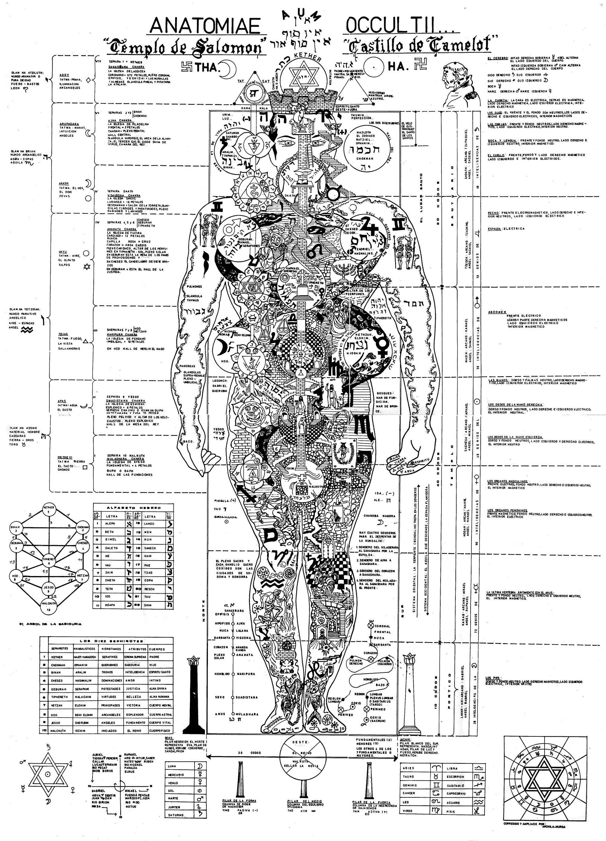 El hombre, el microcosmos del universo (imágenes de la anatomía ...