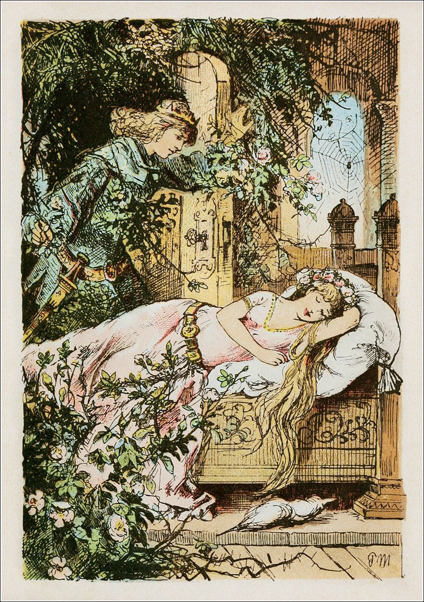 Briar rose features of fairy tales