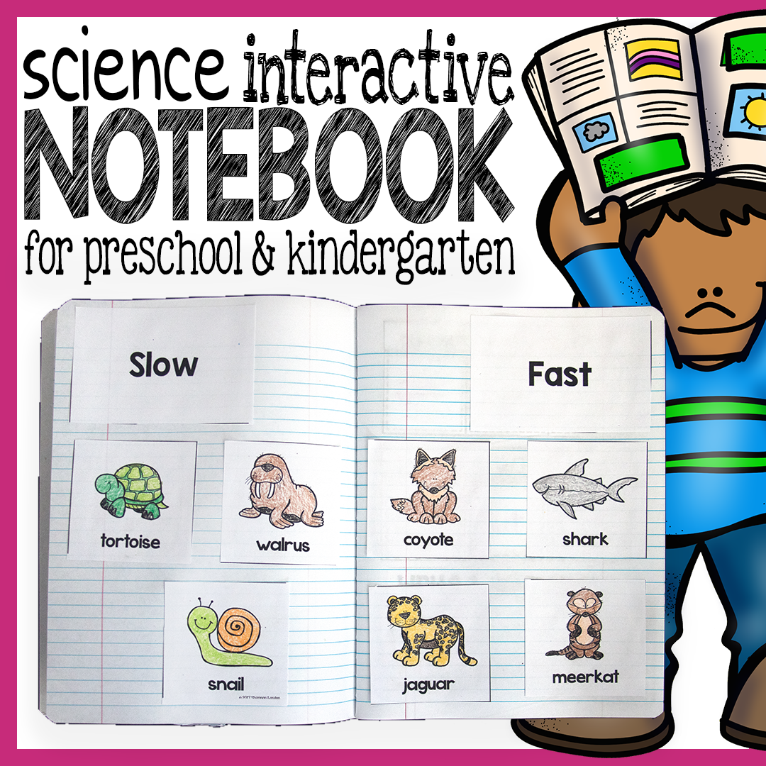 Free Download Fun Science Pages For Preschool