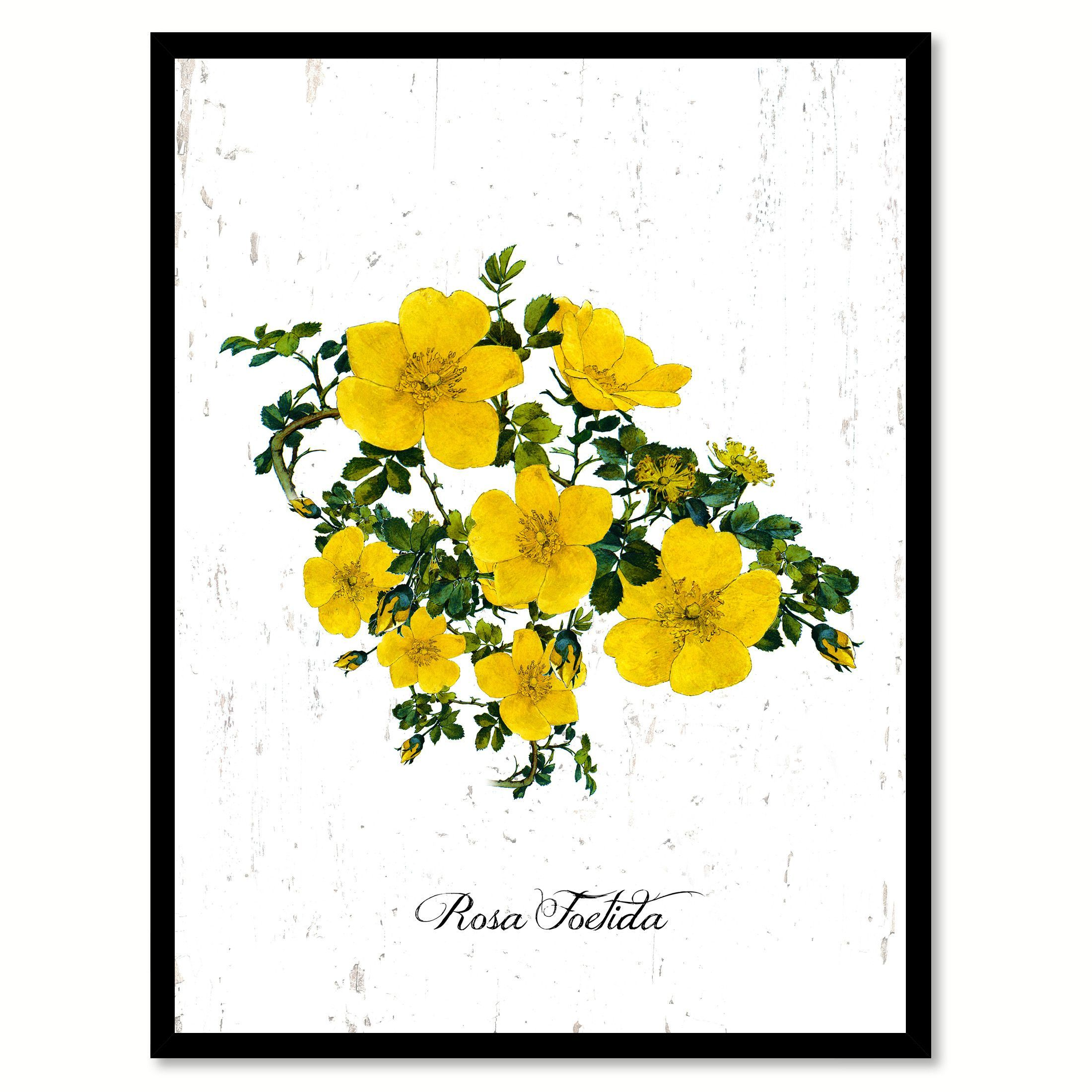 Yellow Rose Flower Canvas Print with Picture Frame Floral Home Decor ...