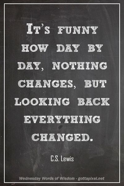 Funny Inspirational Quotes Wisdom: It's Funny How Day-by-day, Nothing Changes, But Looking
