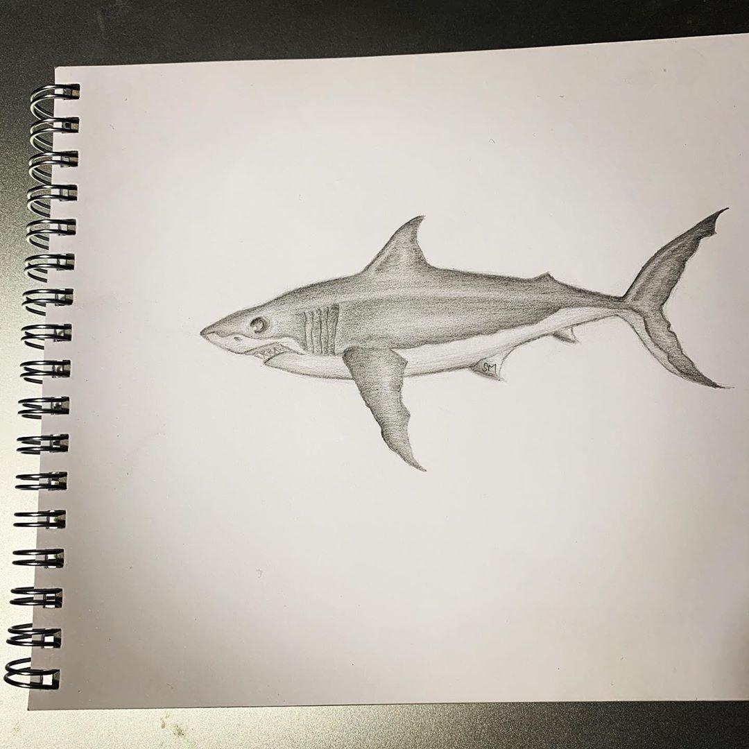 "Instagram Jaw Tattoos: SMAX On Instagram: ""Shark . #shark #mermay #mermay2019"