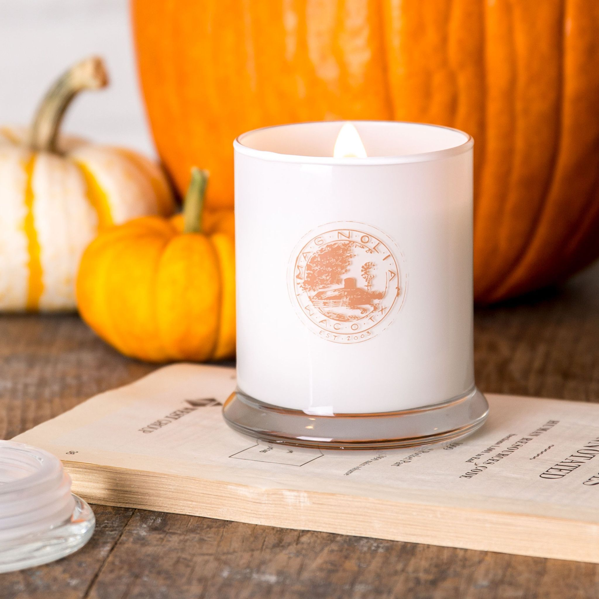 Magnolia Fall Candle Magnolia Market Chip Joanna Gaines Fall