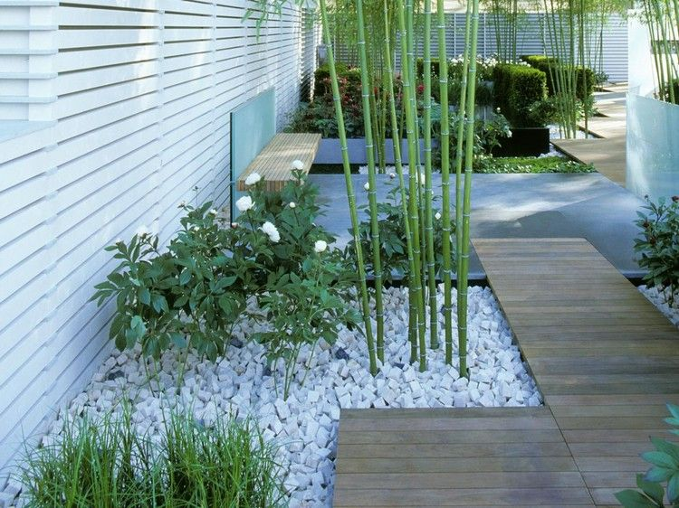 this minimalist garden design has understated style a natural wood walkway meanders through bamboo plants that are companion planted with white flowers in - Bambus Garten Design