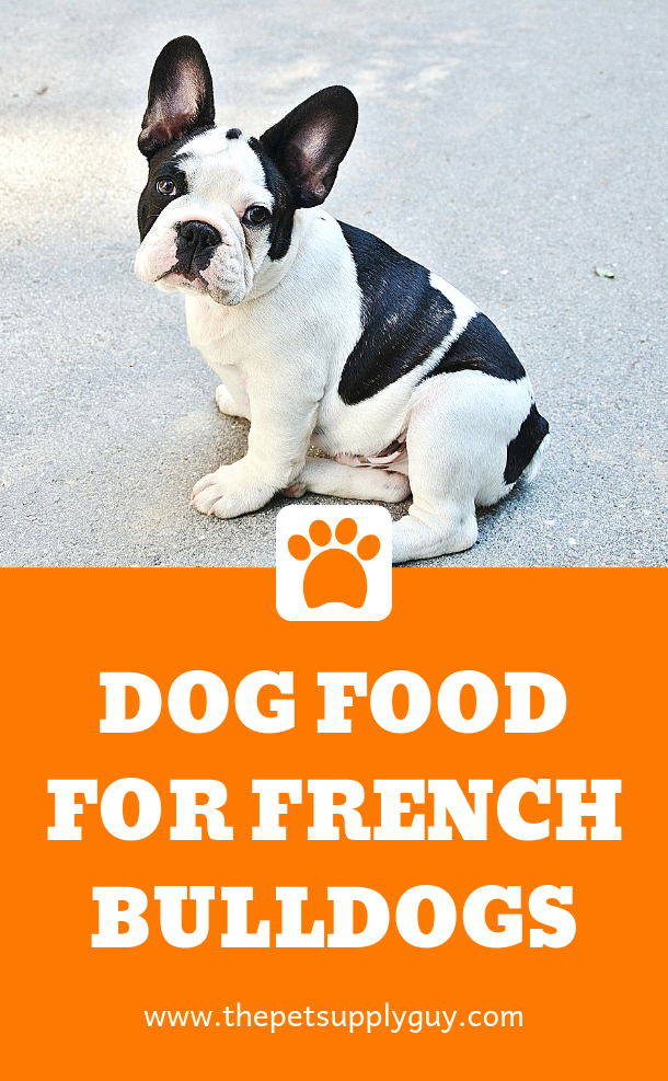 Best Food for a French Bulldog with a Sensitive Stomach