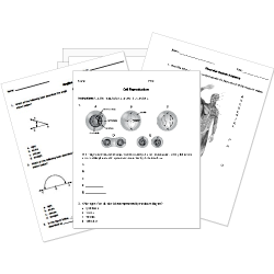 Free Test Maker Printable Use Our Printable K12 Worksheets Or Create Your Own With Our Test .