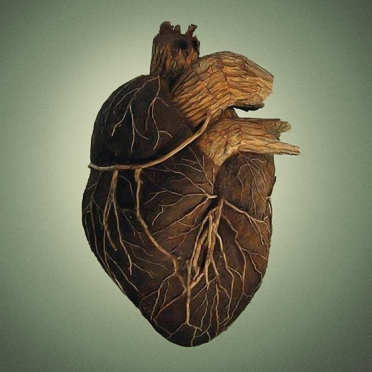Carved Wood Human Heart Wooden Hearts Heart Art Art
