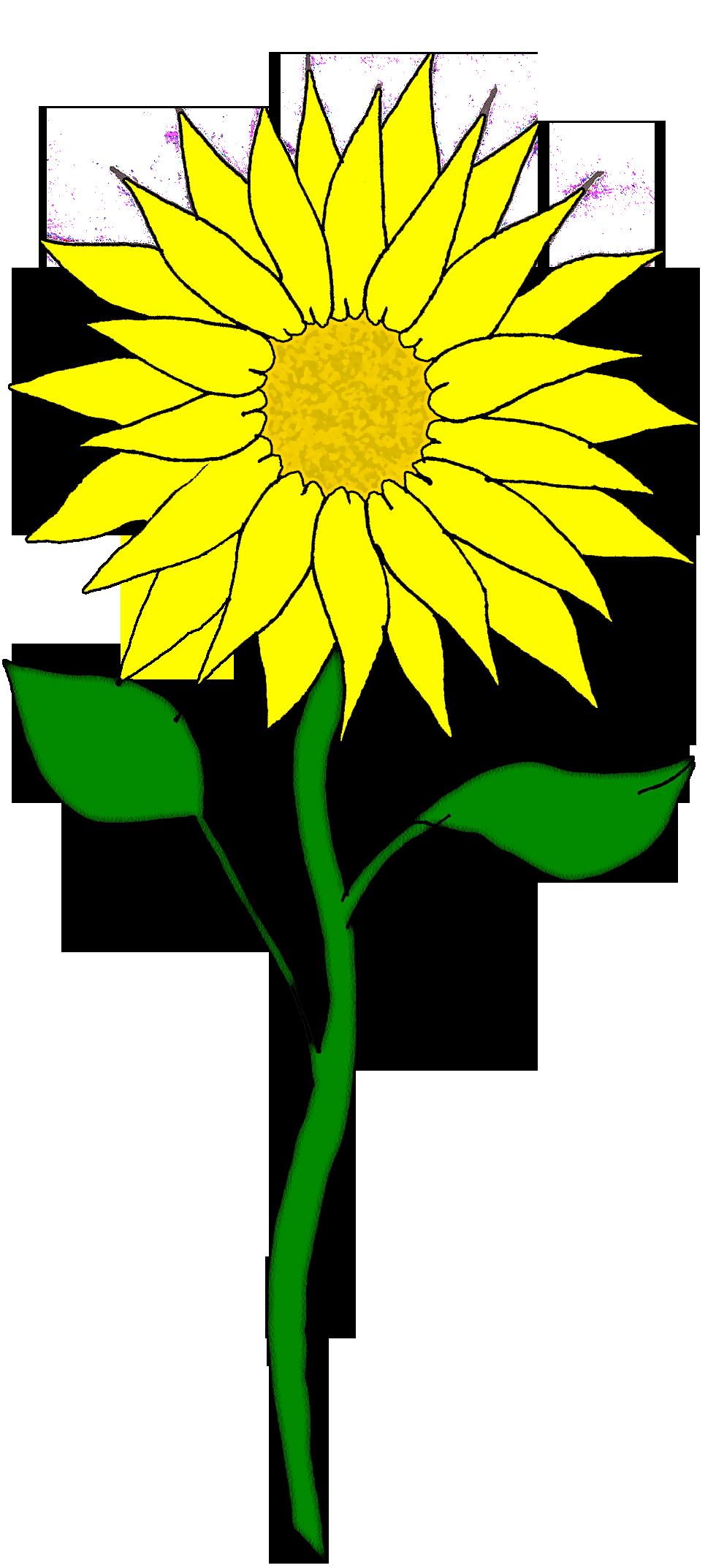 Free Flower Clipart | Flowers--clipart | Pinterest