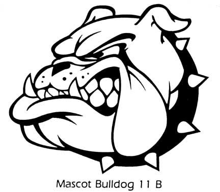 Bulldog Drawings Mascot Sketch Coloring Page Bulldog Drawing