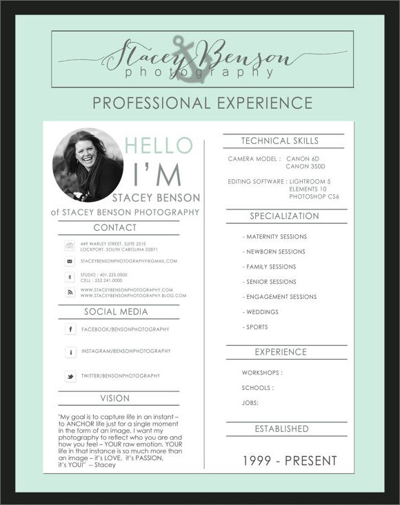 Fashion Resume Templates Professional Fashion Resumes  Google Search