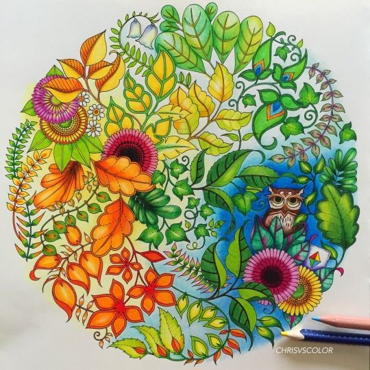 Johanna Basford Picture By Chris Cheng Colouring Gallery