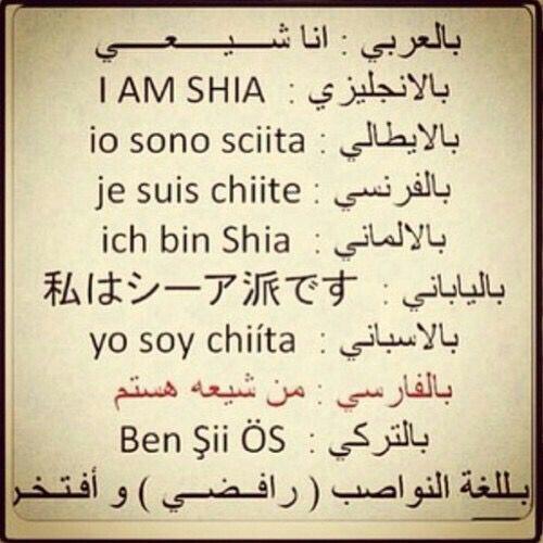 Shia Of Ali Ibn Ali Shia Imam Ali
