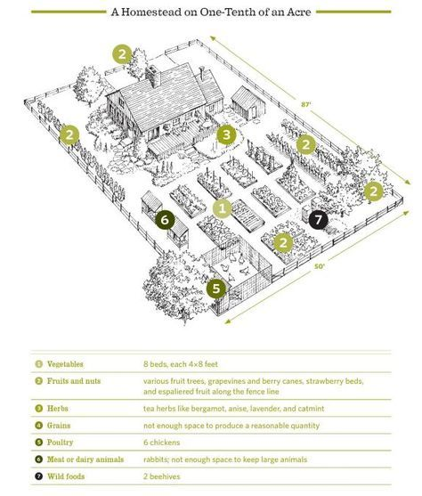 1/10 of an acre layout from The Backyard Homestead | Farm ...