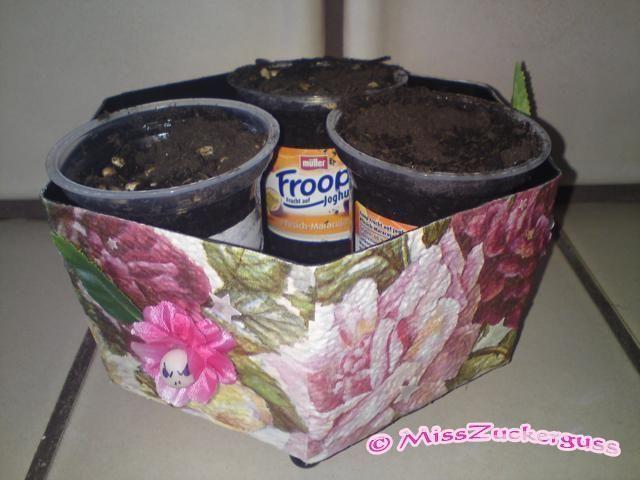 rosiger Blumenübertopf (aus einer Lebensmittelverpackung)