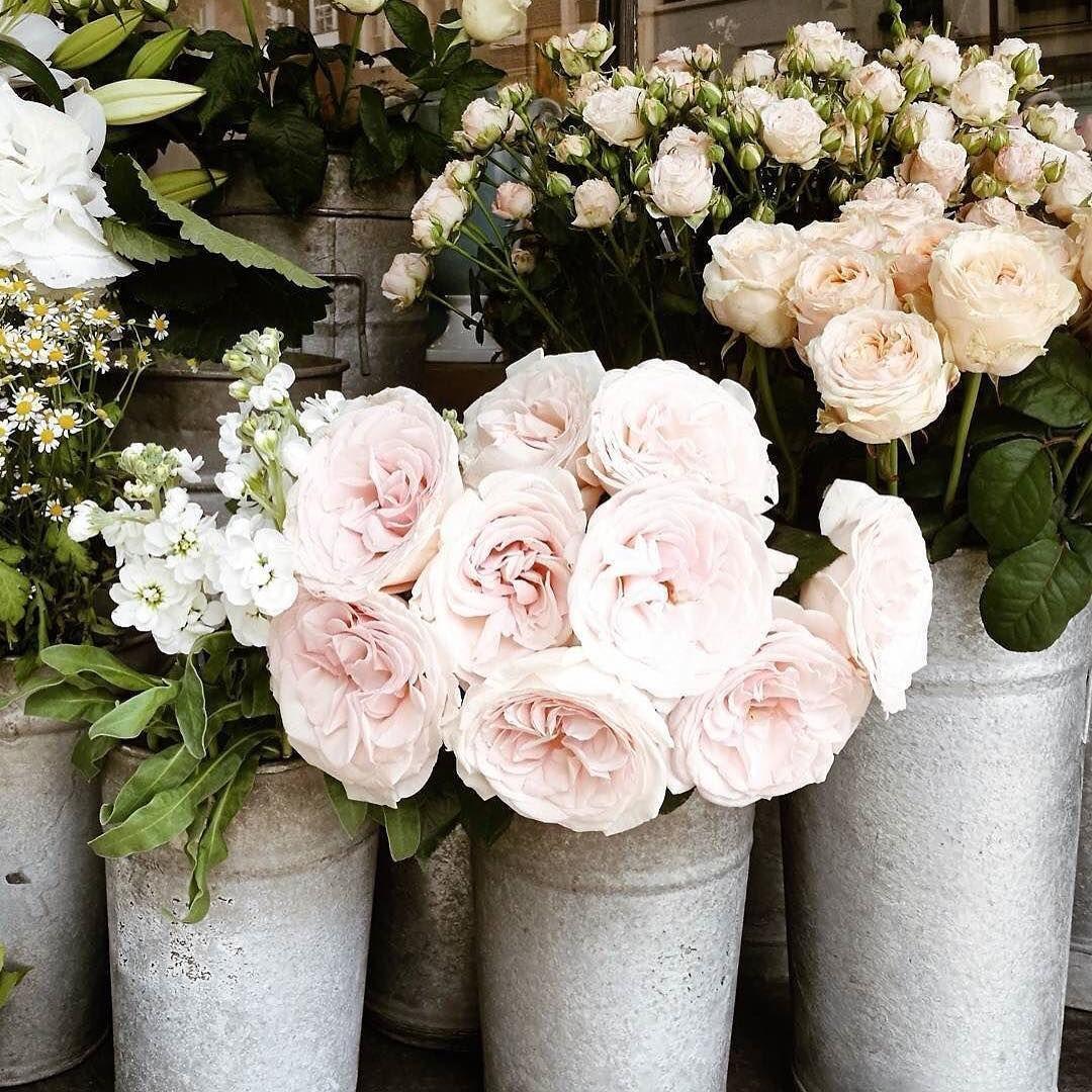 Real Simple Instagram From Mylondonfairytales Les Fleurs