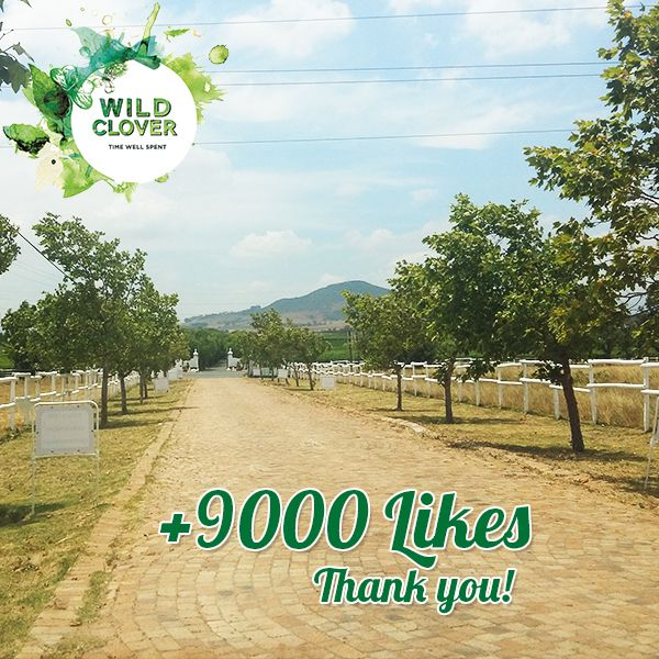 We have reached 9000 likes! Thank you all so much for all the support.