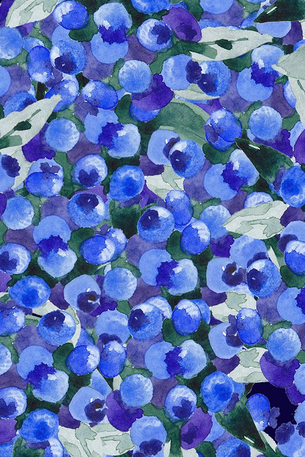 Colorful Fabrics Digitally Printed By Spoonflower Blue Blue Blueberry Harvest Watercolor In 2021 Watercolor Wallpaper Hippie Wallpaper Cute Wallpapers