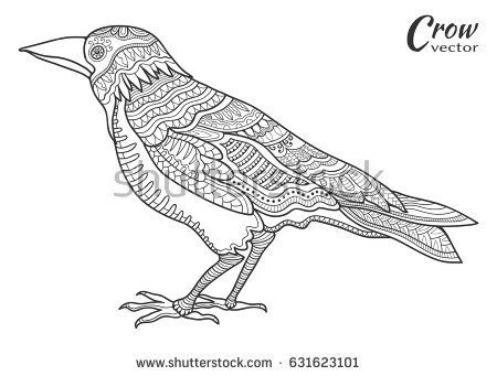 Hand Drawn Crow Raven Doodle Sketch Bird In Zentangle Style For Coloring Book Page Animal Collection For Tatt Bird Doodle Crows Drawing Animal Coloring Pages