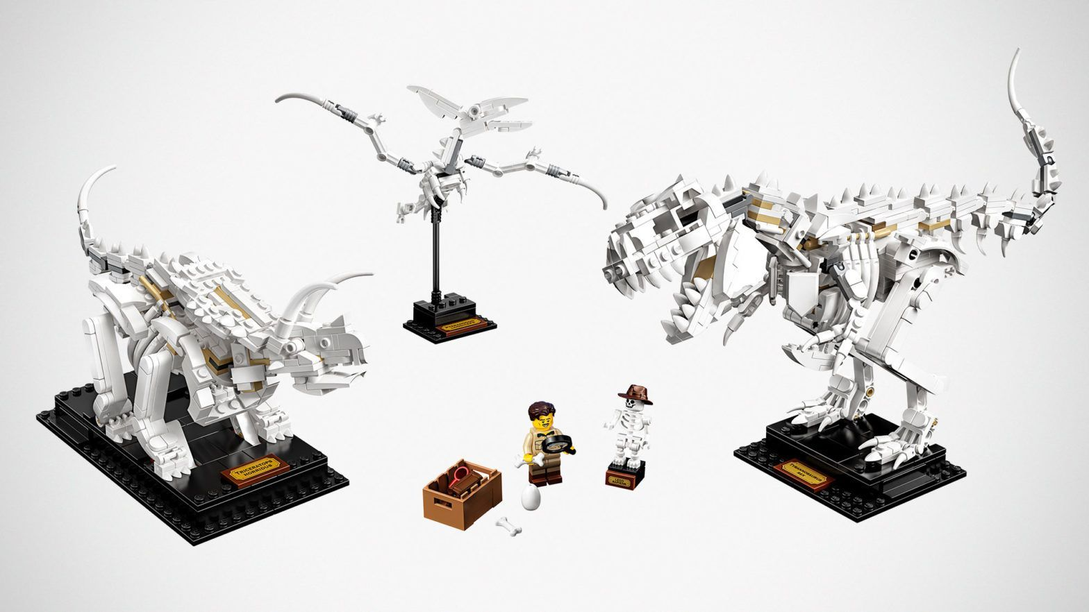 LEGO Ideas Dinosaur Fossils Packs Three Dinosaurs, Shovel Not Required #historyofdinosaurs LEGO Ideas Dinosaur Fossils Packs Three Dinosaurs, Shovel Not Required #historyofdinosaurs