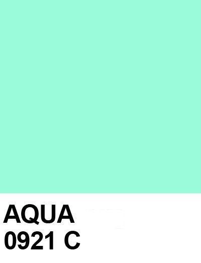 This Looks More Like Mint To Me Aqua Color Palette Pantone Colour Palettes Pantone