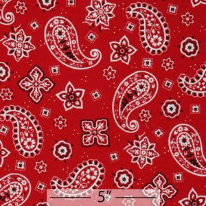 Cotton Canvas - How about a table cloth for your picnics, or window treatments for your favorite little cow poke