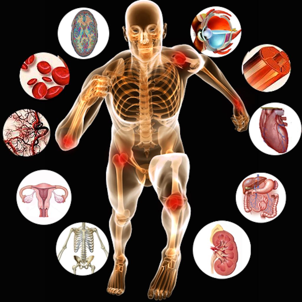 Anatomy online test