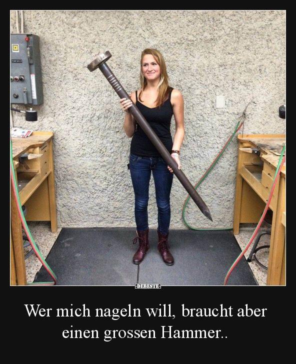Hammer Lustige Bilder