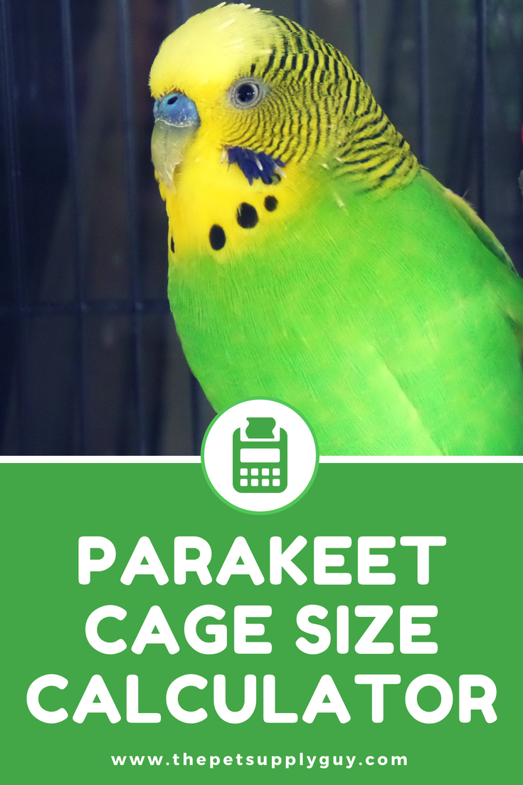 Budgie Cage Size Calculator Parakeet Cage Calculator