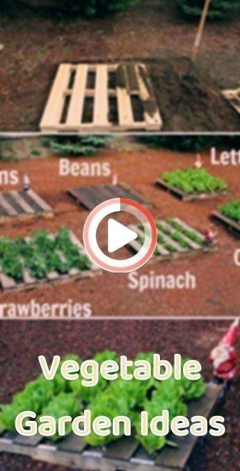 Photo of Pin on Action Figures