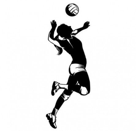 45 trendy sport volleyball faces