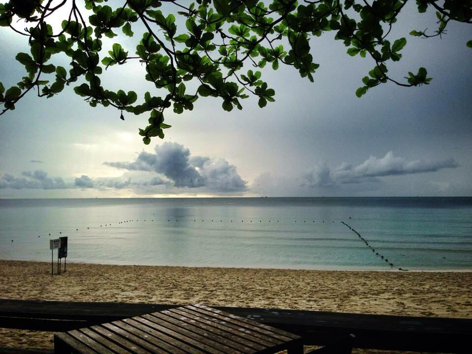 My morning view from The Library, Koh Samui, Thailand.