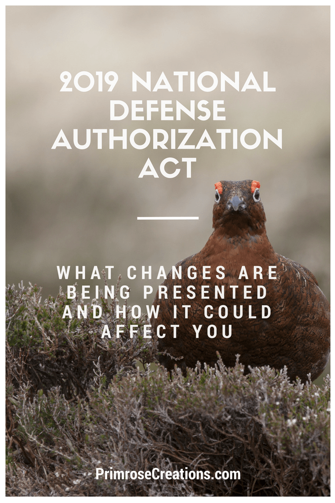 The National Defense Authorization Act of 2019 could