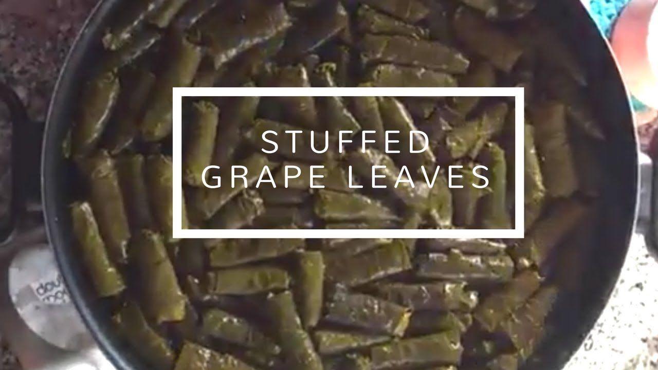 Yummy ورق العنب والكوسا باللحمة Stuffed Grape Leaves Zucchini By Tata Suzy S Kitchen Authentic Middle Eastern D Stuffed Grape Leaves Grapes Grape Leaves