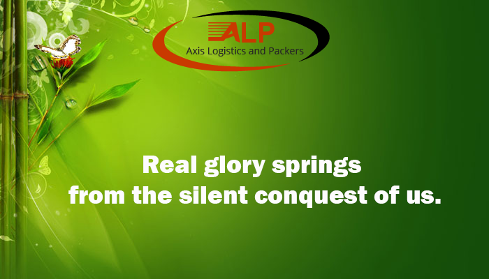 Thought of The Day: Axis Logistic and Packers