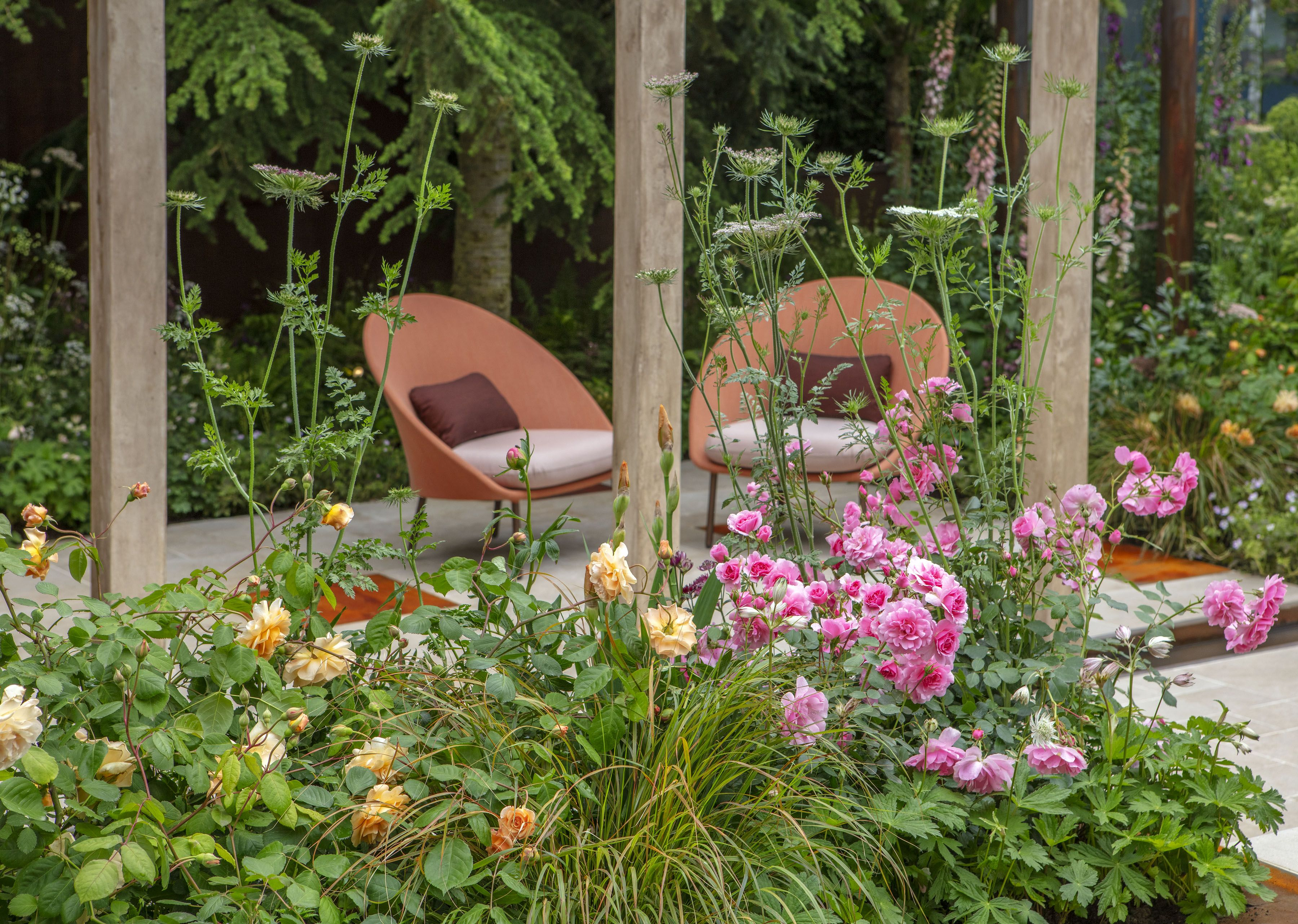 The Wedgwood Garden Rhs Chelsea Flower Show 2019 Jo Thompson