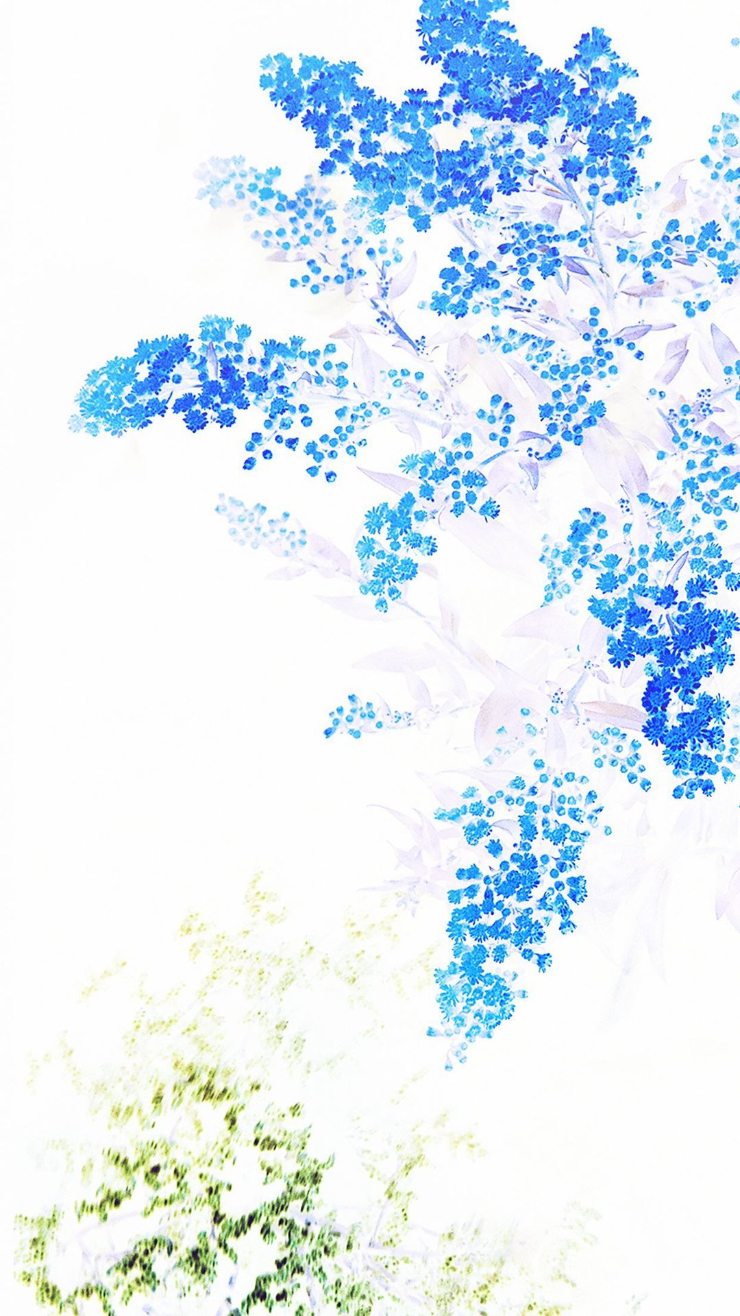 Apple Blue White Flower Ios9 Iphone 7 Wallpaper Iphone
