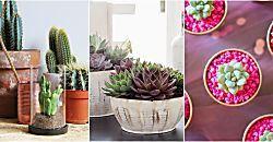 Para que los esquejes broten y se conviertan en las plantas más bellas... En la HUERTA DE IVAN emplean este truco desde hace tiempo y no les puede ir mejor. ¡Apunta!