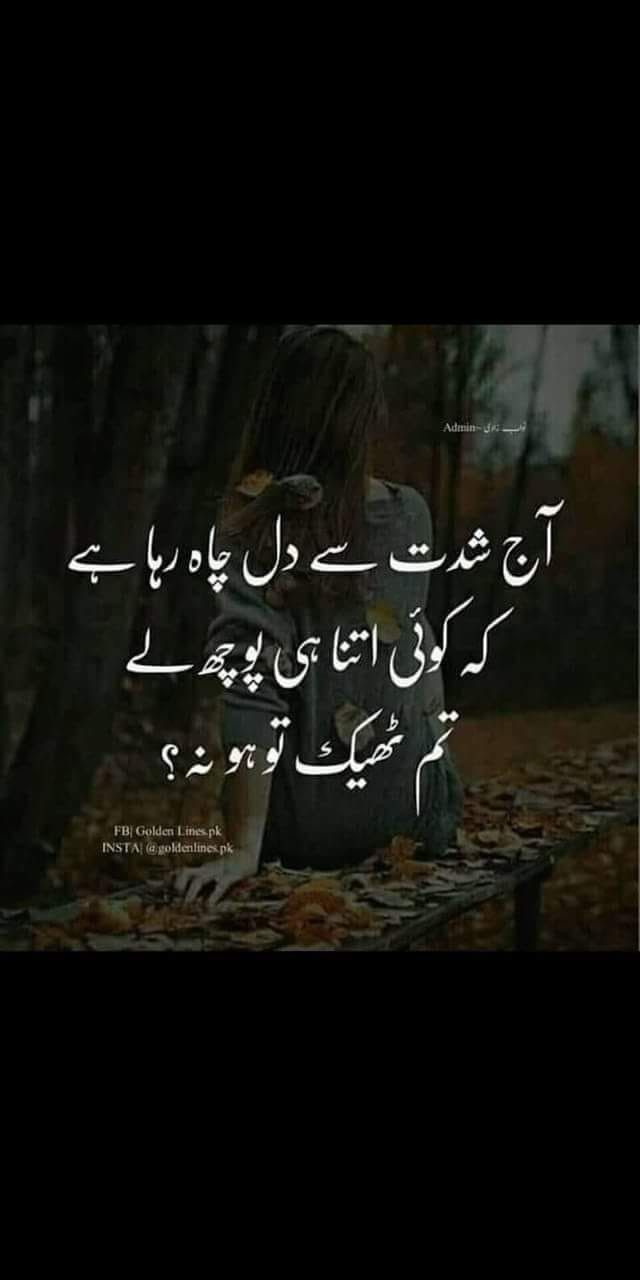 Pin by Urdu Poetry on Urdu Poetry اردو شاعری Funny